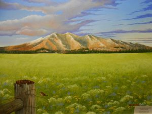 additional-photos-of-paintings-039