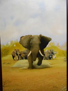 african-wildlife-series-001