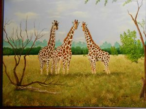 african-wildlife-series-002